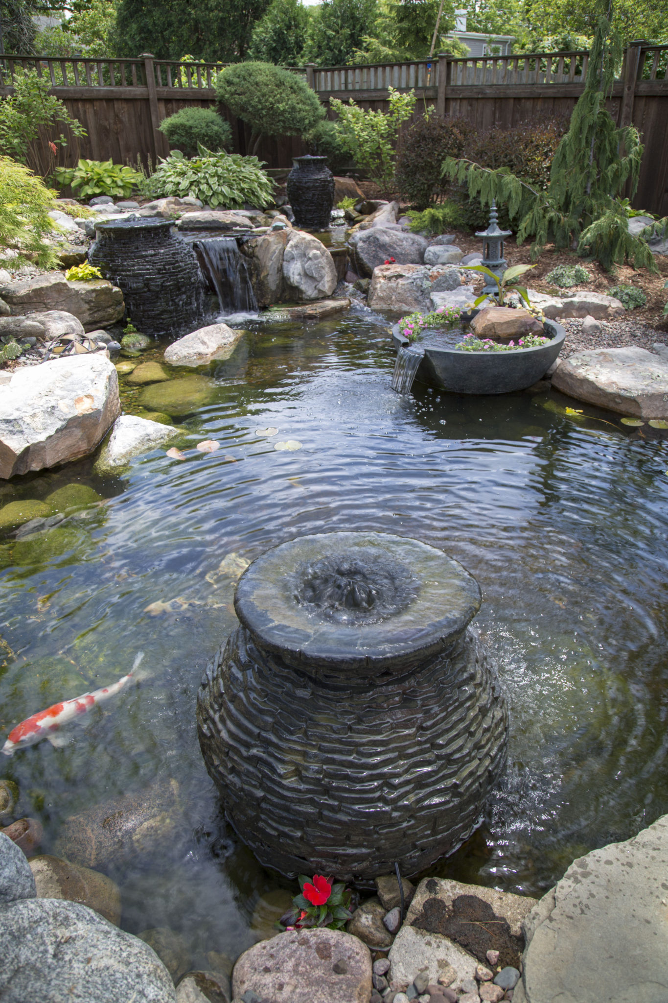 Spring/Summer Pond Maintenance - Ponds by BEE