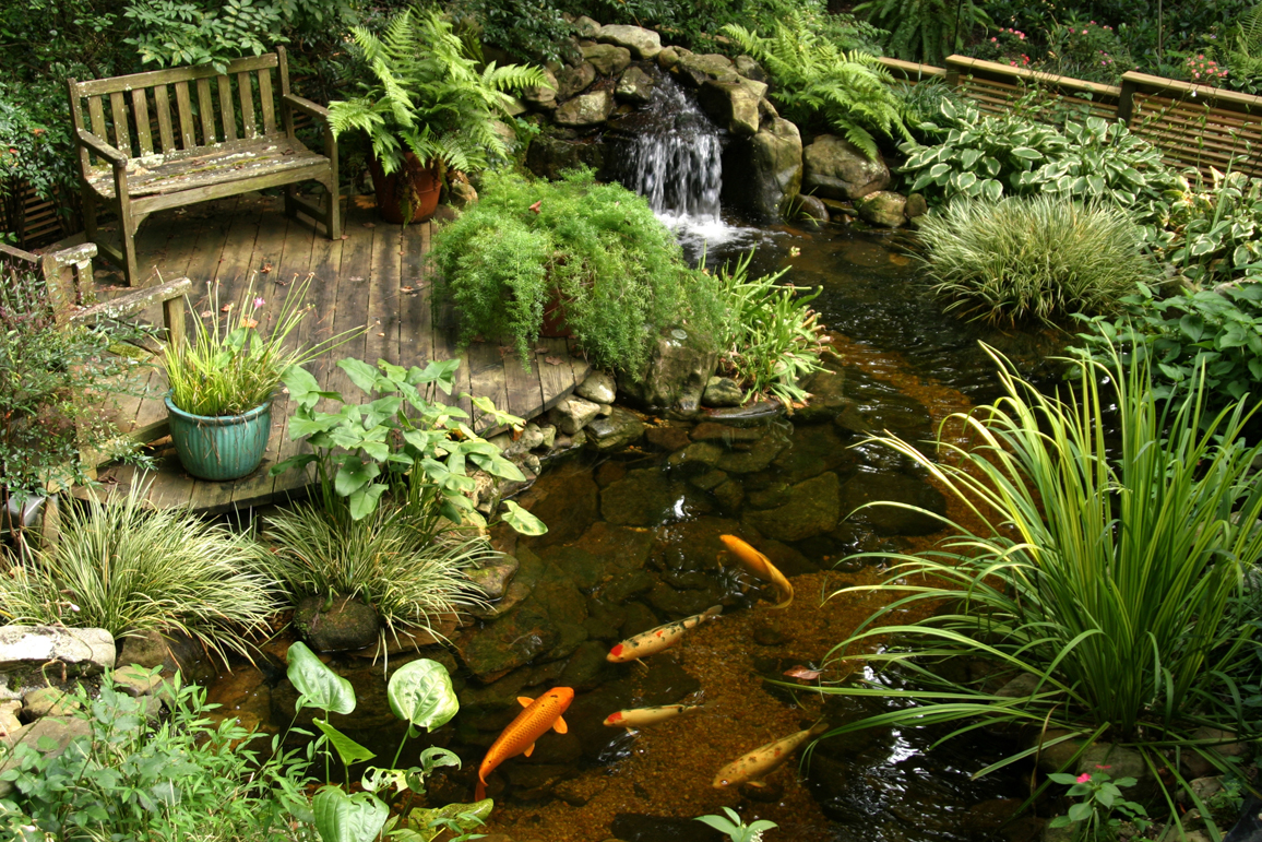 FreeImagesWater_Gardens_16L